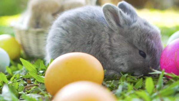 Wielkanoc  w Góralskim Dworku